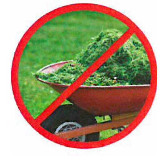 No Grass Clippings