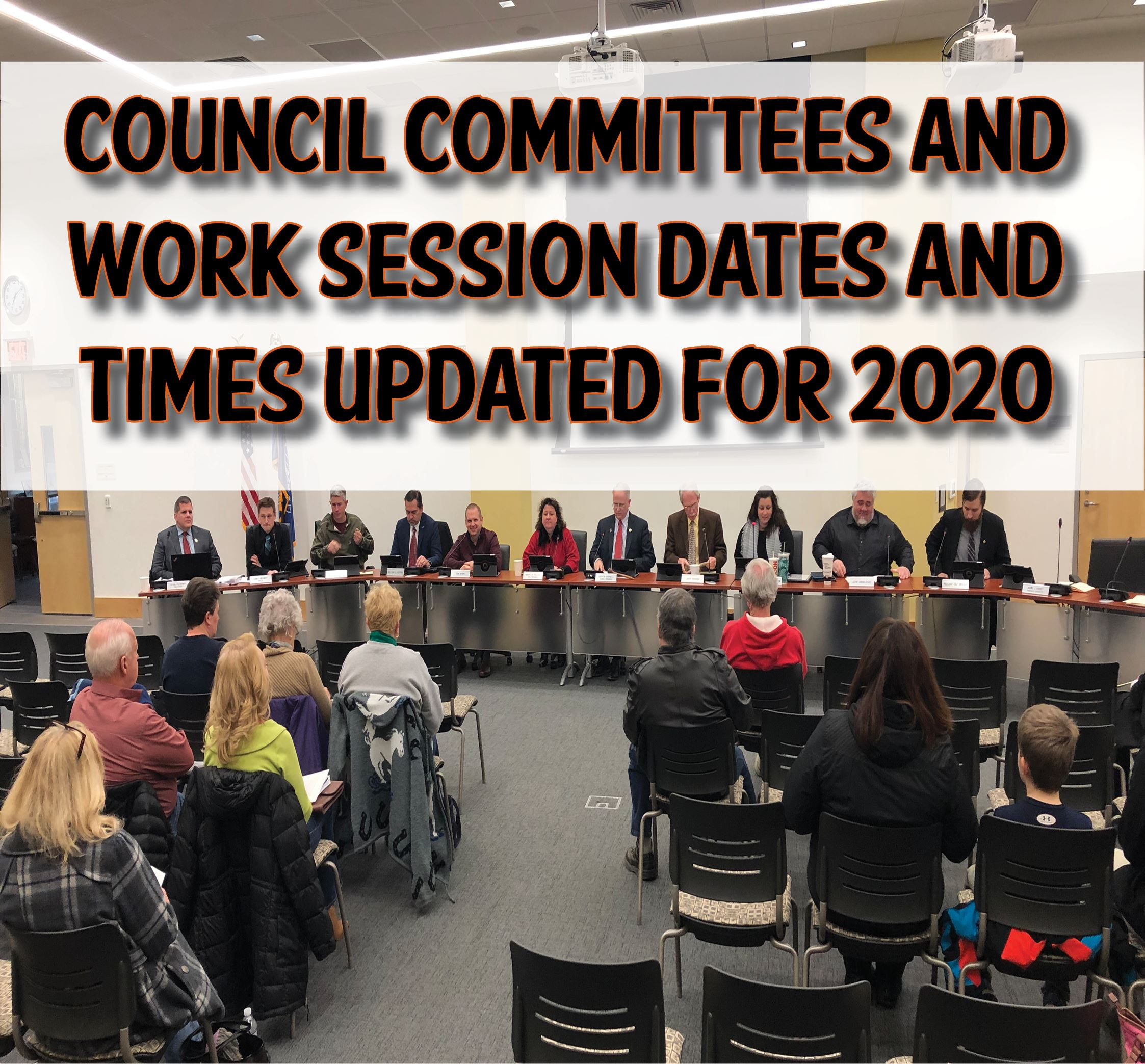 2020 Council Committees